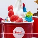 Yogurt Factory – Marseille (Fermé depuis, mais toujours existant à Paris !)