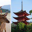 Hiroshima – île de Miyajima – Japon